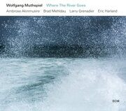 Wolfgang Muthspiel - Where The River Goes /  Cd 1