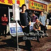 Wallflowers - Wallflowers (Breach) /  Cd 1