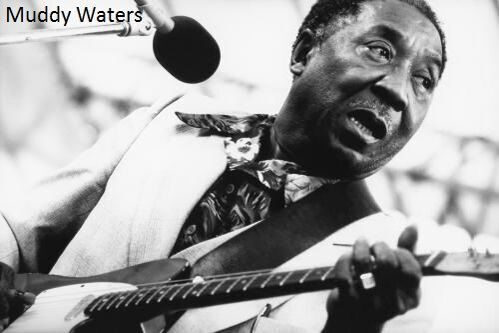 muddy-waters-CWWE_o_tn